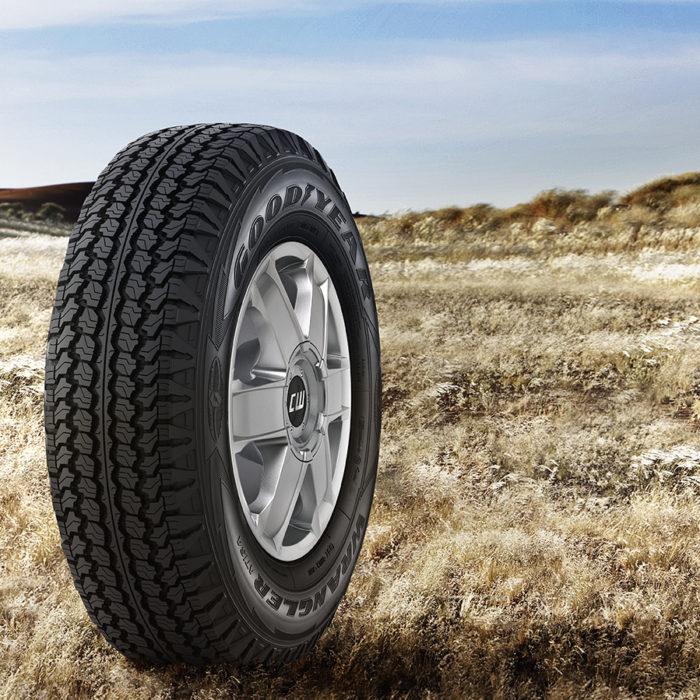 Какие шины выбрать: зимние или всесезонные